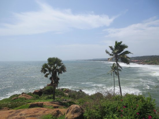 The Leela Kovalam Beach: Palmyrah & Coconut trees