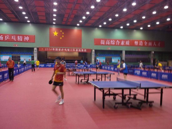 Table tennis Training Base