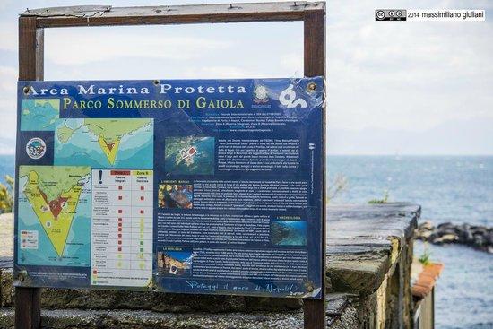 Parco Sommerso di Gaiola Area Marina Protetta : 2