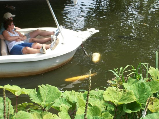 Efteling: A +/- 20 minute boating-tour to relax inbetween all other * magical rides *.