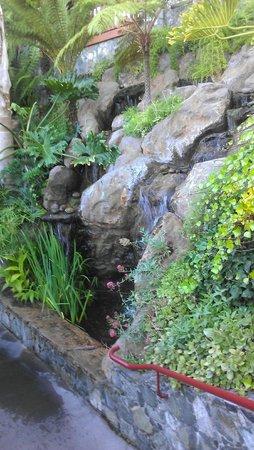 Shadowbrook: One of the wonderful waterfalls