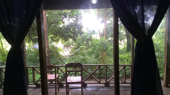 Rivertime Resort and Ecolodge: the window view from room