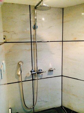 Burgary Hotel : Shower