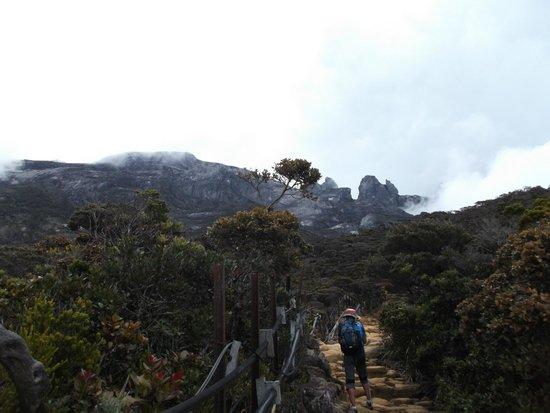 Mount Kinabalu: misty mountain