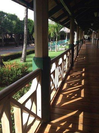 Iberostar Dominicana Hotel: grounds