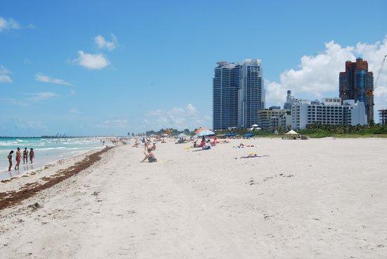 South Beach : la spiaggia di Miami