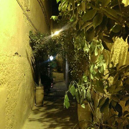 Riad Dar One : Beautiful walk to the hotel