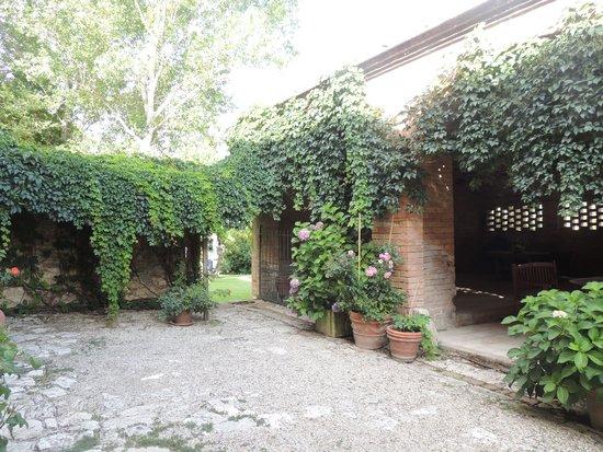 Agriturismo San Fabiano : garden