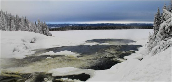 Tannforsen: Вид на озеро