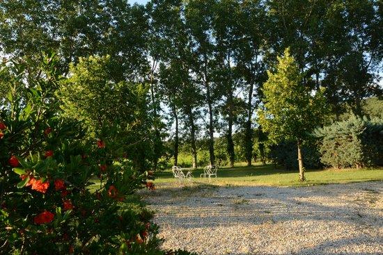 Aux Tournesols : Lovely garden