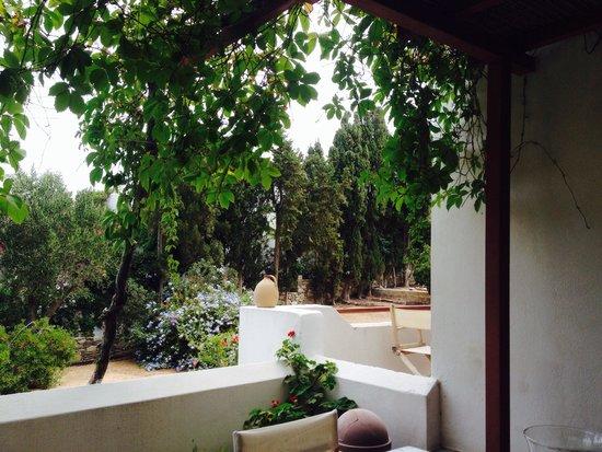 Hotel Manto: La terrasse et le jardin
