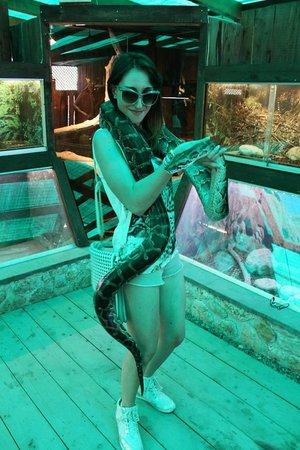 Corfu Aquarium: Pitone