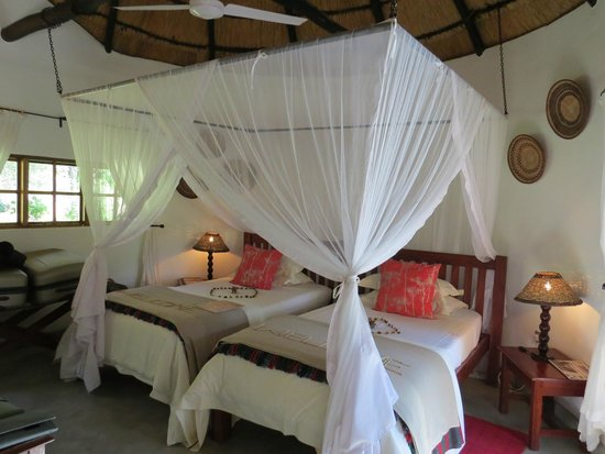 Waterberry Zambezi Lodge: 'Sunbird' bedroom