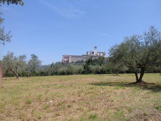 Assisi Garden: la vista di Assisi mentre si sale dall hotel