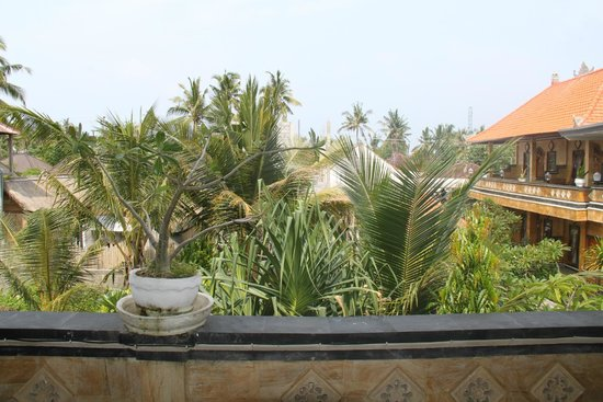 Nitya Home Stay: View from room