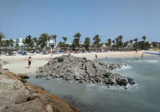Hôtel Palm Azur: Disastro completo