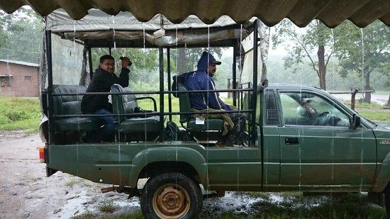 The Serai Kabini: Jungle Jeep Safari at Kabini