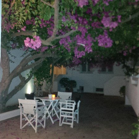 Apollon Boutique Hotel: giardino interno