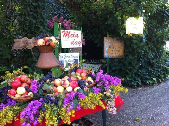 Abbazia di Farfa : banco di frutta autunnale