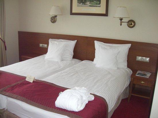 Bukowy Park Hotel Medical SPA: Pokój