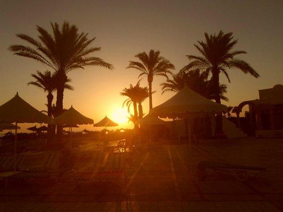 Al Jazira Beach & Spa: LEVER DE SOLEIL VUE DE LA PISCINE