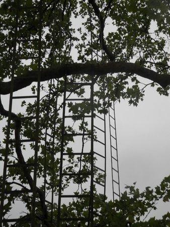 Domain of Chaumont-sur-Loire: Les échelles dans le parc