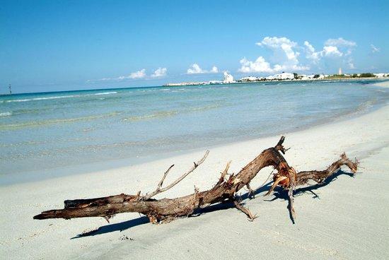 Hyencos Hotel Callyon: spiaggia incontaminata