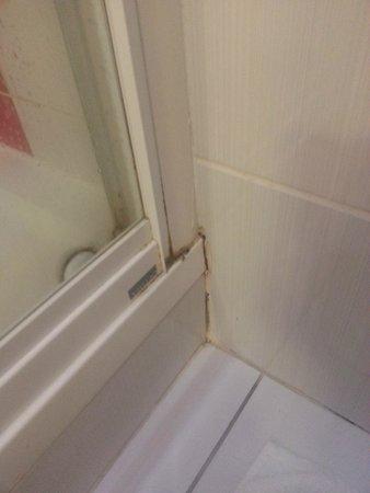 Euro Hotel Clapham: moisissure