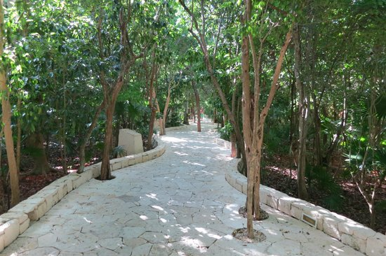 Catalonia Royal Tulum : Path from reception to the rooms and beach