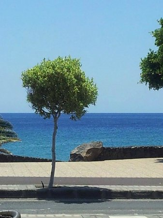 Arena Dorada Apartments: Beach front view