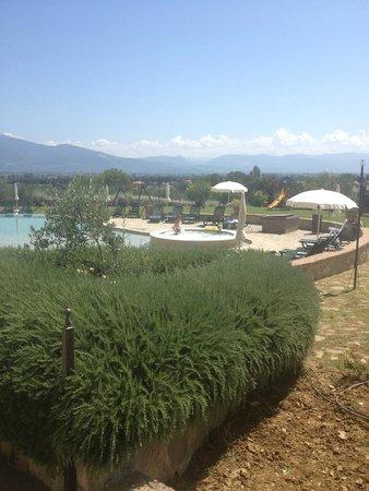 Tenuta Del Perugino : Vista della piscina