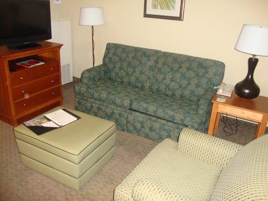 Embassy Suites by Hilton Orlando International Drive I Drive 360 : Ante sala