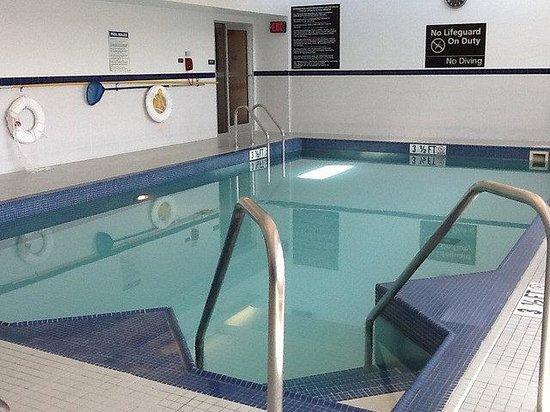Hampton Inn & Suites Boston Crosstown Center: Pool