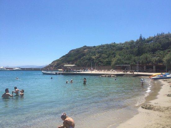 Mirabello Beach & Village Hotel : Hotel Beach