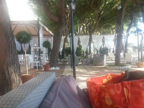 Hotel La Perla Preziosa: la pineta