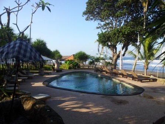 Pondok Pitaya: Hotel, Surfing and Yoga : pool