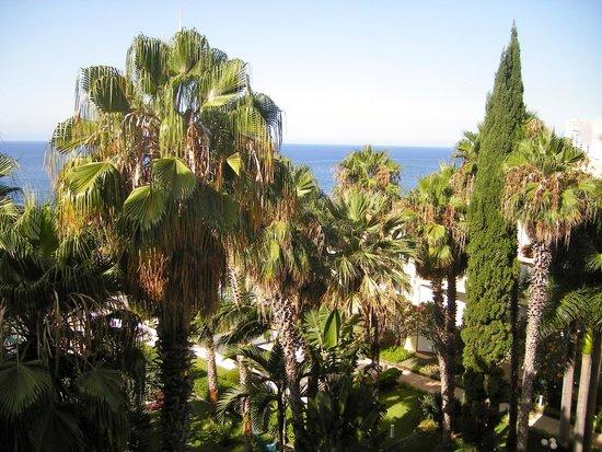 Suite Hotel Eden Mar : Vue sur les jardins