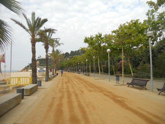 Mont-Rosa Hotel: Дорожка возле пляжа