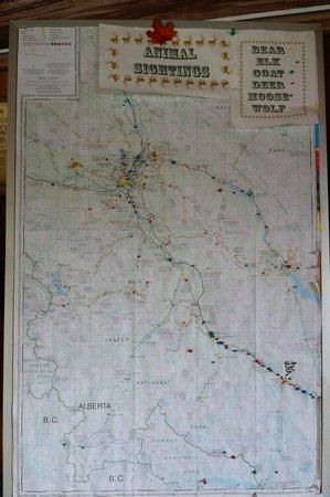 Sunwapta Falls Rocky Mountain Lodge : Map with push pins for marking animal sightings