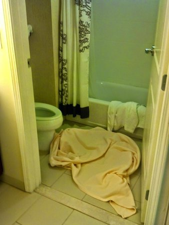 Residence Inn Columbia Northwest/Harbison: I put the blanket in the bathroom to make sure it was cleaned.