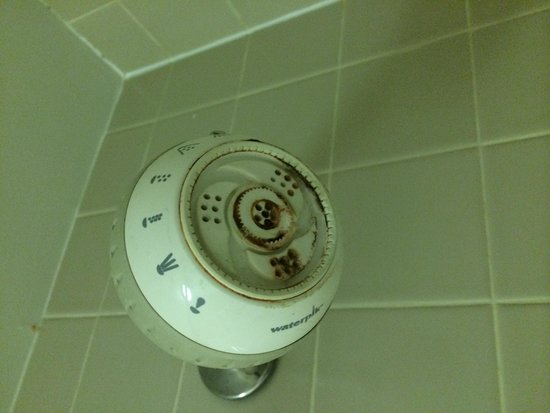 Holiday Inn Knoxville N - Merchant Drive: old showerhead