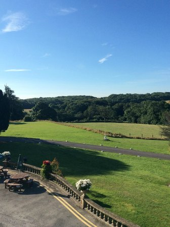 Court Colman Manor: The view from our bedroom window