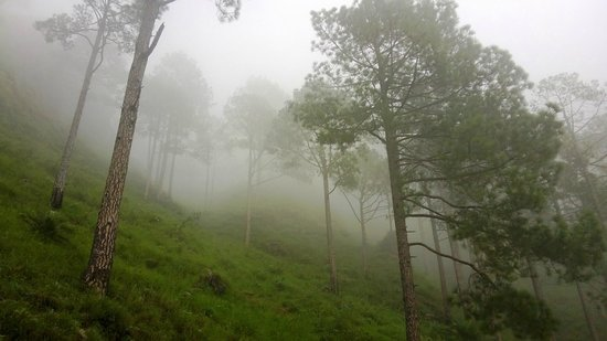 Vaishno Devi: Beauty of Nature