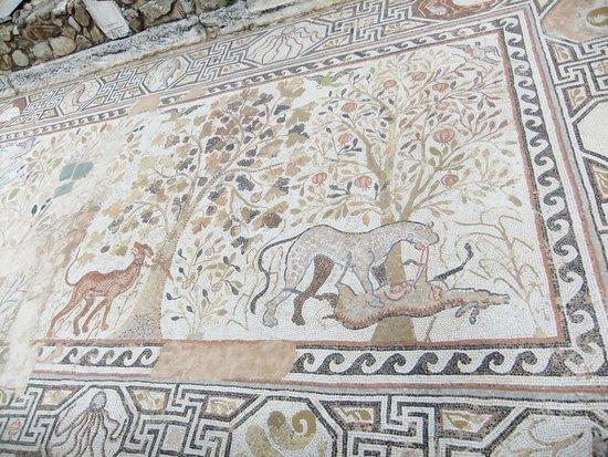 Heraclea: mosaic