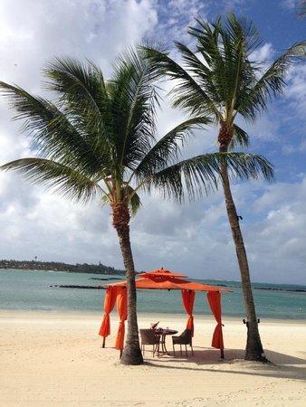 Constance Prince Maurice: Sur la plage...