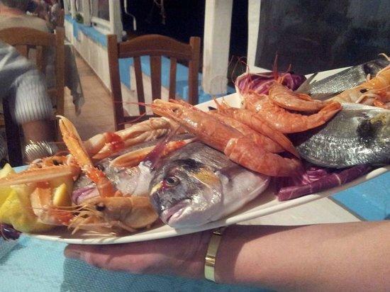 Hotel Riviera: pesce freschissimo