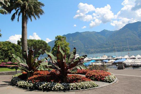 H+ La Palma Hotel & Spa Locarno: Blumenpracht zwischen Hotel und See