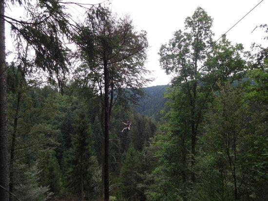 Hirschgrund - Zipline Area Schwarzwald: A view