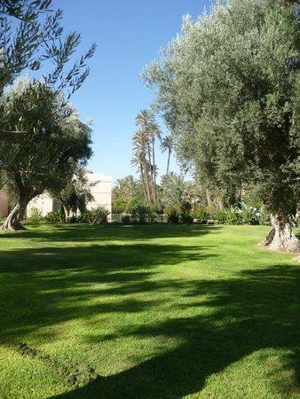 Club Med Marrakech La Palmeraie: les jardins