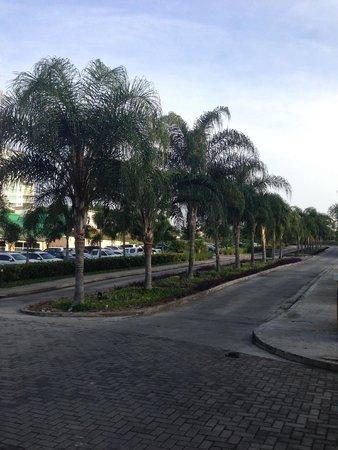 Sheraton Bijao Beach Resort : hotel grounds